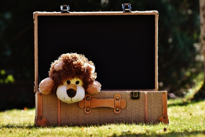 cute-green-lion-luggage-teddy-bear-fun-1289352-pxhere.com